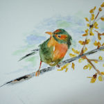Cours de peinture dessin marseille